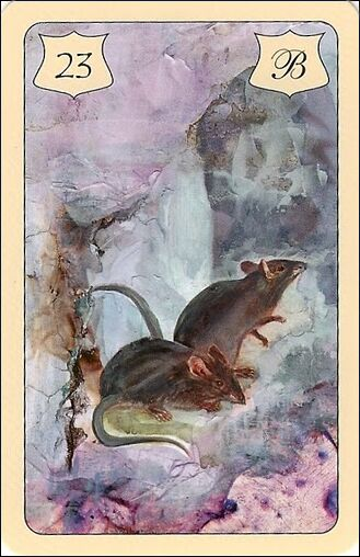 ratos4