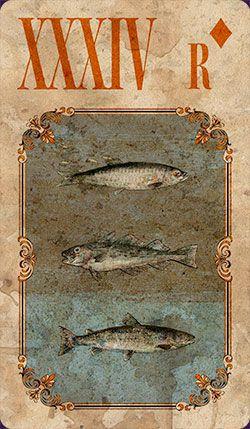 peixes9.jpg